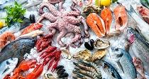 Перевозка рыбы и морепродуктов: правила, требования и советы